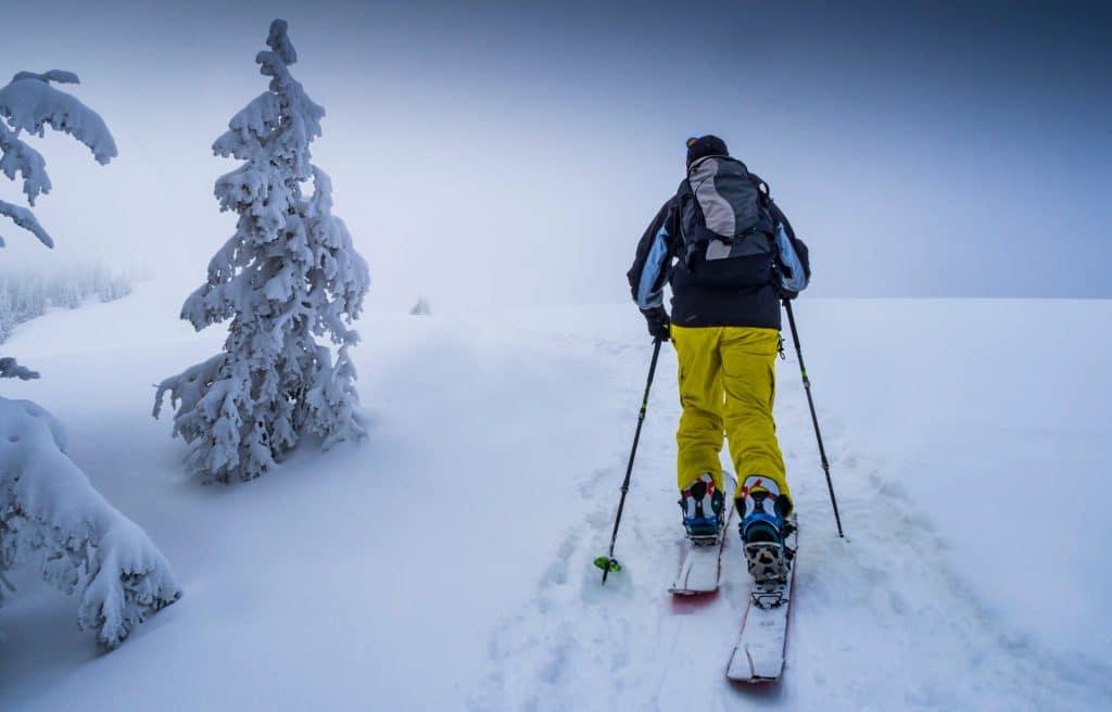 Splitboard Snowboard Vs Snowshoe – Which Is Better?